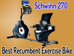 Schwinn 270 – best recumbent exercise bike