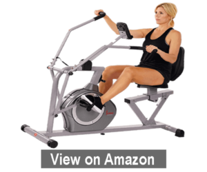 Sunny Health & Fitness Magnetic Recumbent Bike - best recumbent exercise bike